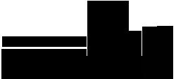 Logo RSP Karneval