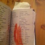 Wörterbuch Schritt 6