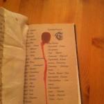 Wörterbuch Schritt 4